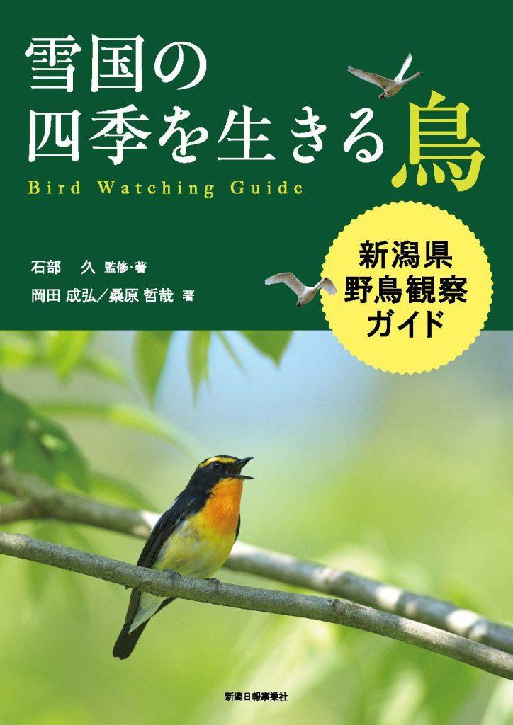 雪国の四季を生きる鳥