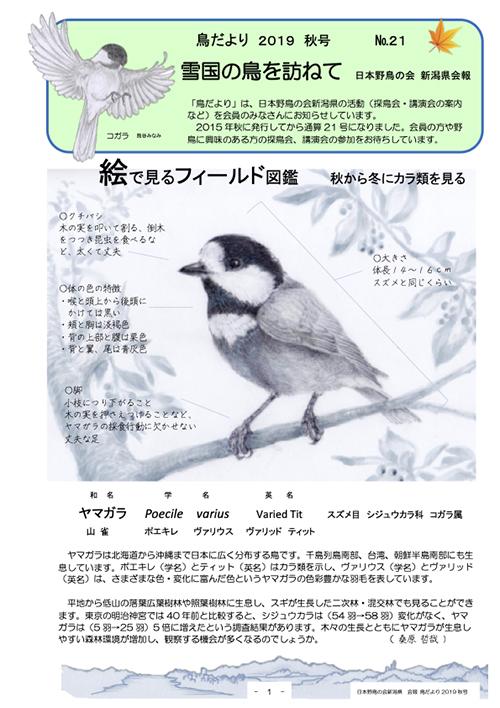 鳥だより21号(ヤマガラ)
